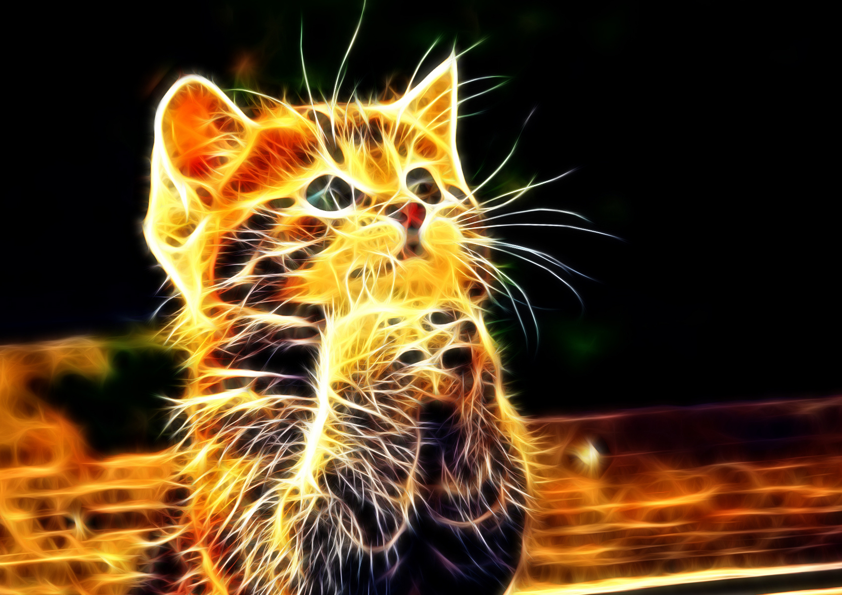 22725 Animals 3d Wallpapers For Desktop   Cool Backgrounds Of 1697x1199