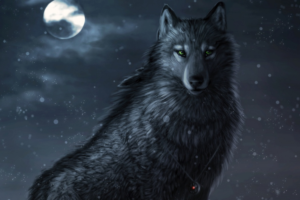 Animated Wolf wallpaper | Best HD Wallpapers