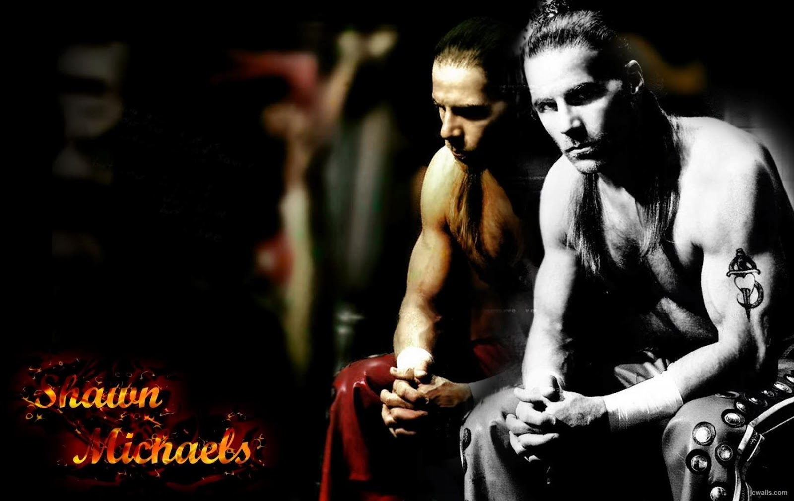 All Wallpapers WWE Shawn Michael hd New Nice Wallpapers 2013 1600x1010