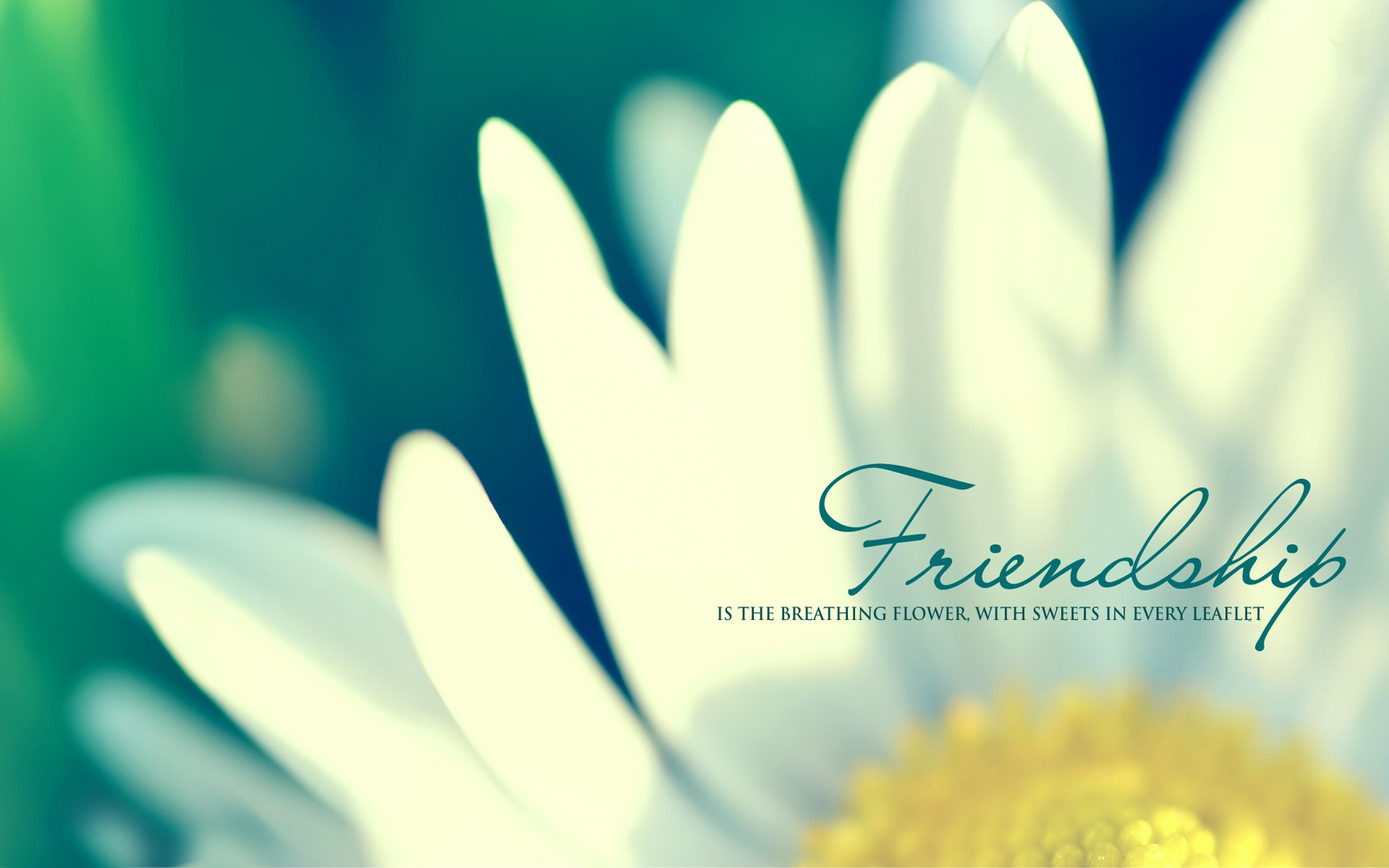 Best Friends Quotes And Nature