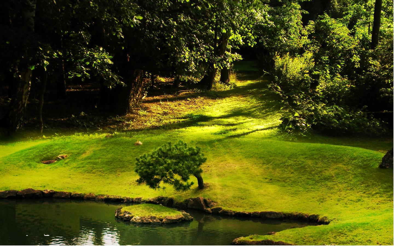 wallpaper background downloads download Natural Wallpaper 1440x900
