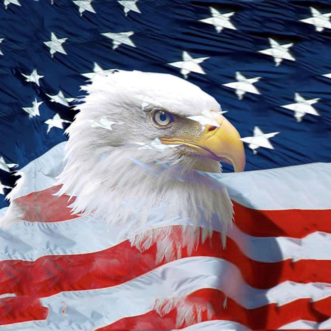 American Eagle Wallpapers 1280x1280
