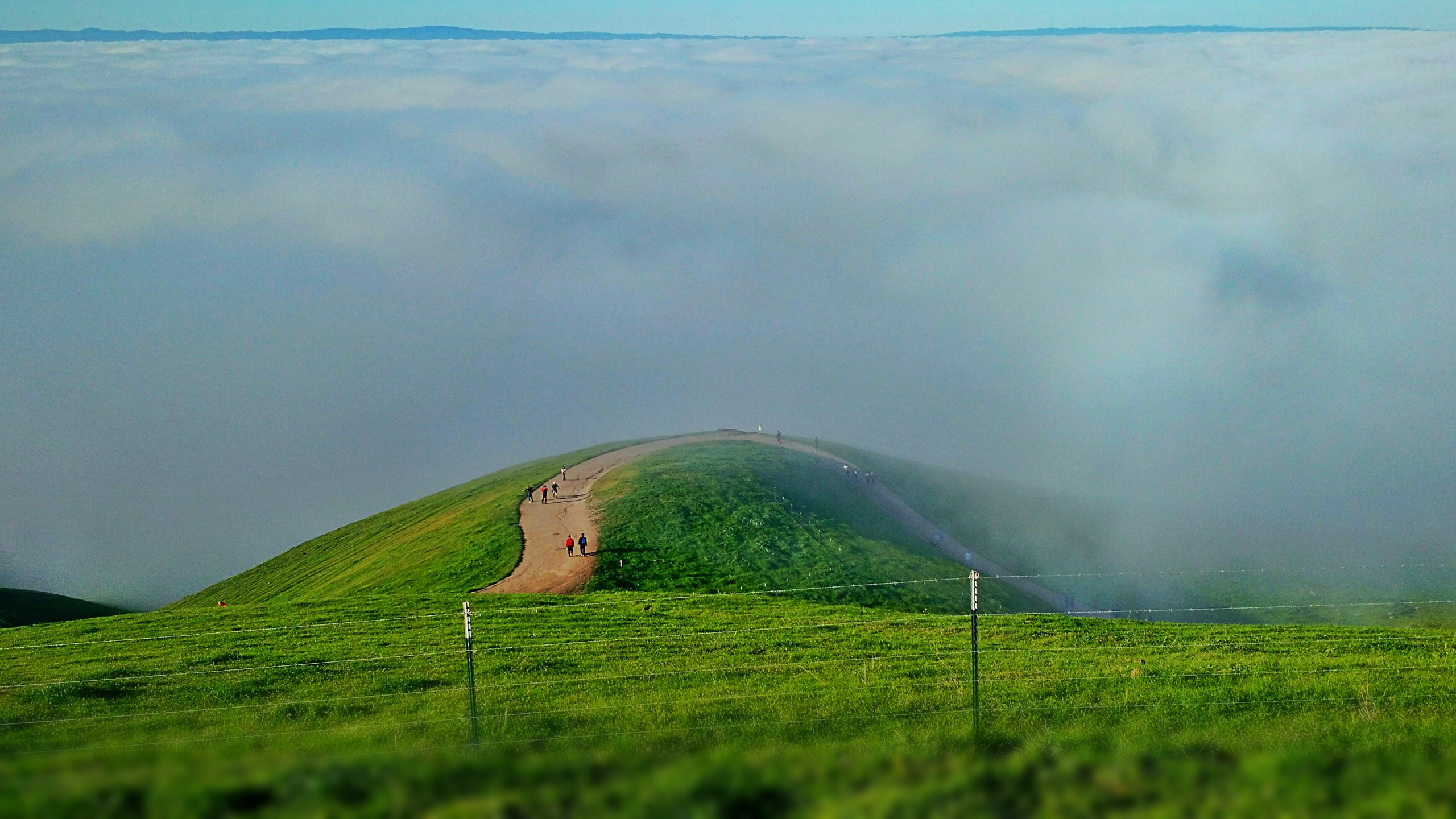 BOTPOST [BOT] Above the clouds at Mission Peak Regional Preserve 2560x1440