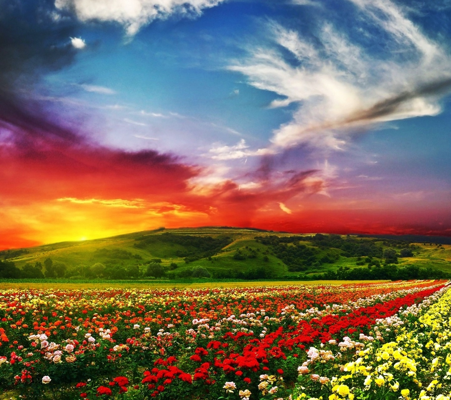 Pretty Landscape Wallpaper