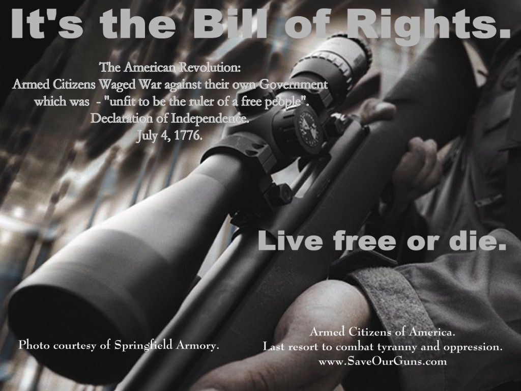 Gun Rights Prints   Individual Gun Rights protect the Bill of Rights 1024x768