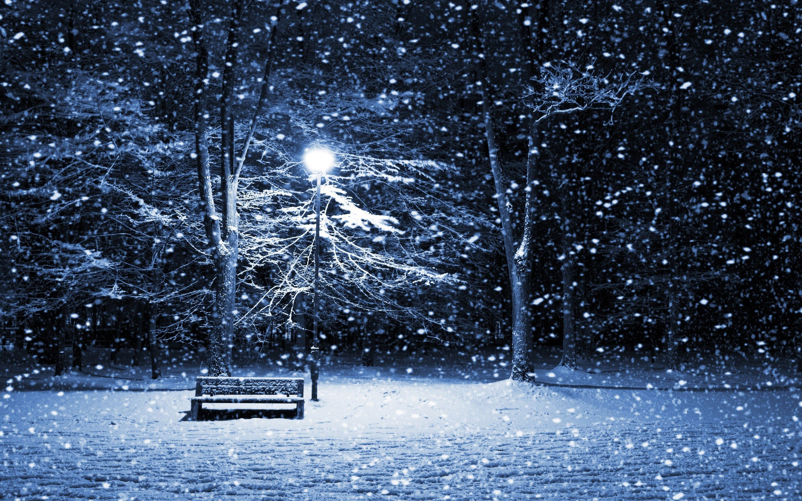 Storm Desktop Wallpapers Park Bench Snow Storm Desktop Backgrounds 2560x1600