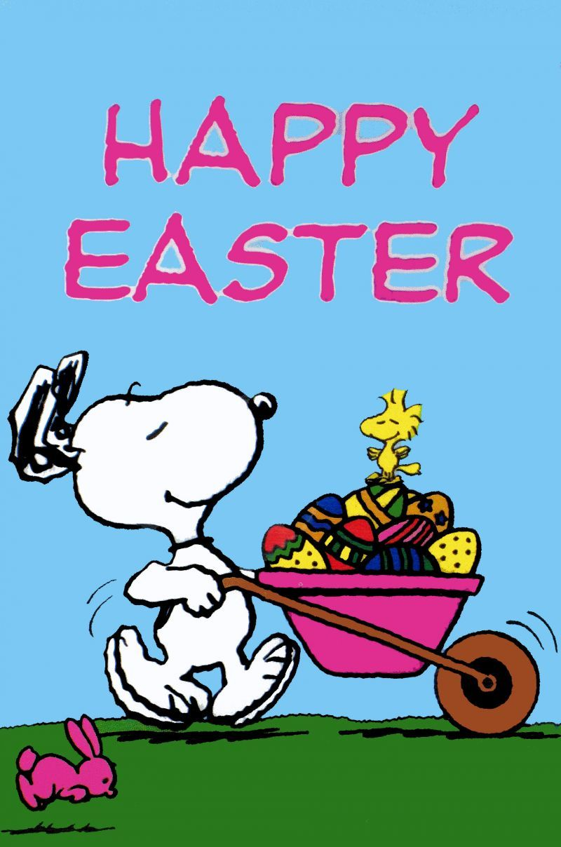 Happy Easter Snoopy spring snoopy spring wallpaper Charlie 800x1208