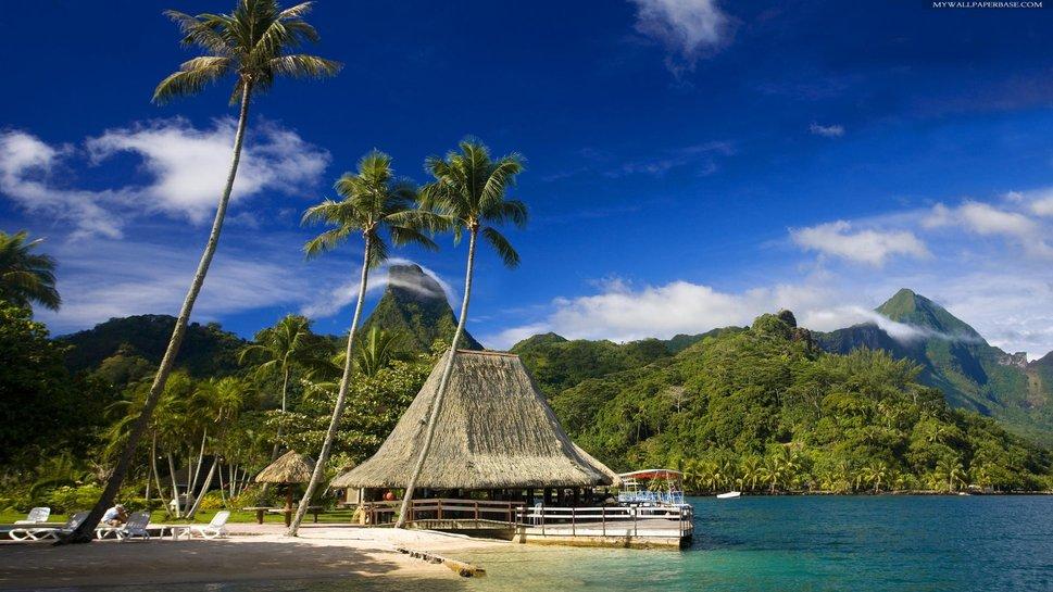 tropical resort wallpaper 969x545