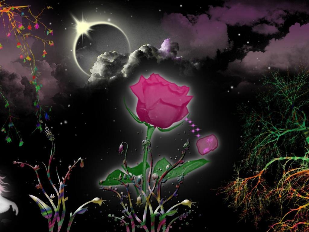 magical fairy garden wallpaper   44049   HQ Desktop Wallpapers 1024x768