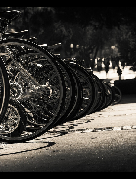 Bikes in Black and White Wallpaper for Phones and Tablets 450x590