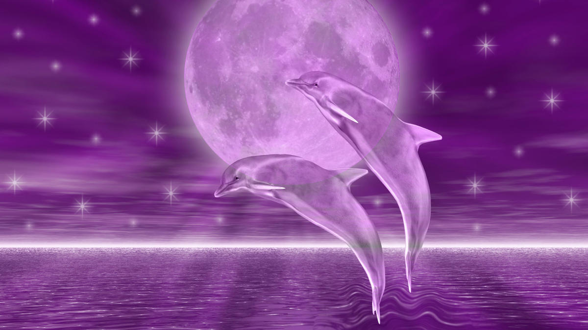 Download Dolphins HD Wallpaper background for Android 1200x675