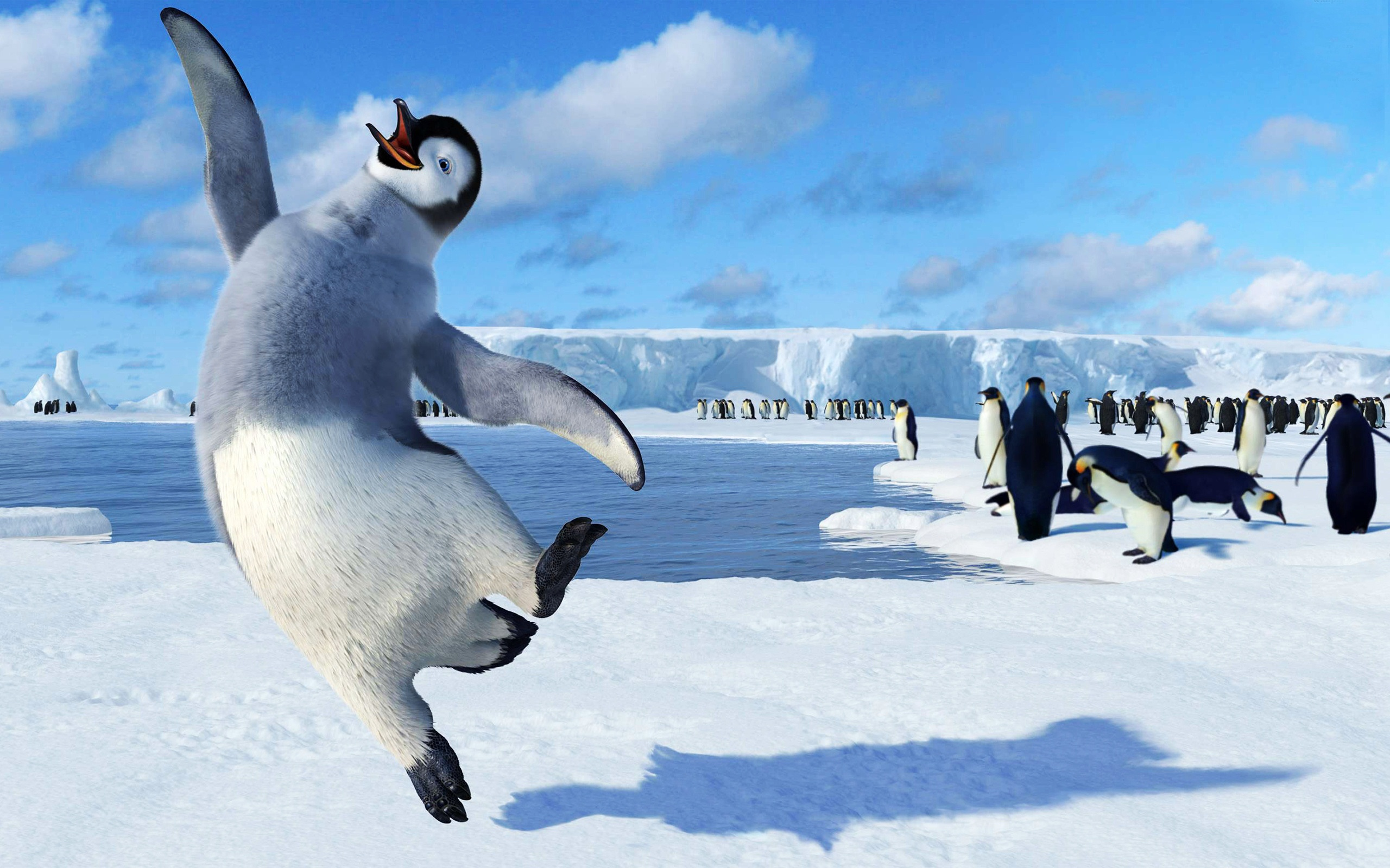 Happy Feet Wallpapers HD Wallpapers 2560x1600