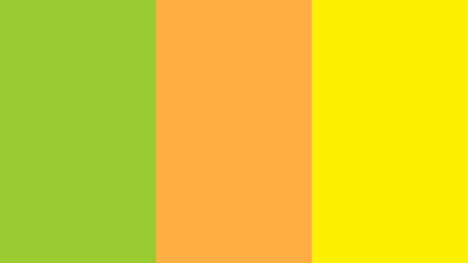 Yellow green Yellow Orange and Yellow Rose Three Color Background 1600x900