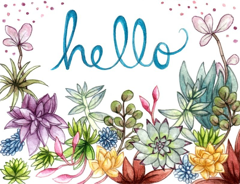 Free Download Hello Spring Tumblr Hello Spring 800x615 For Your
