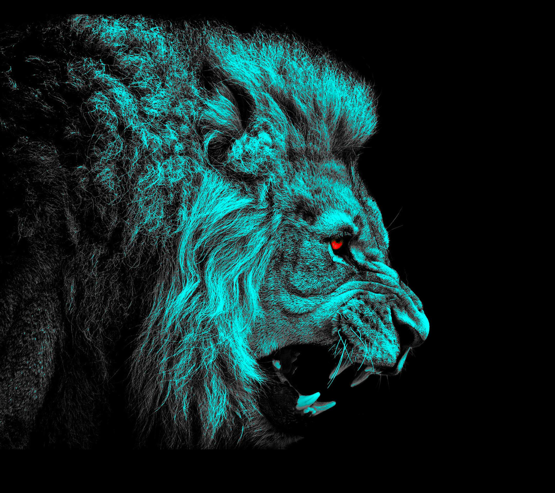 1160 Lion HD Wallpapers Background Images 2160x1920