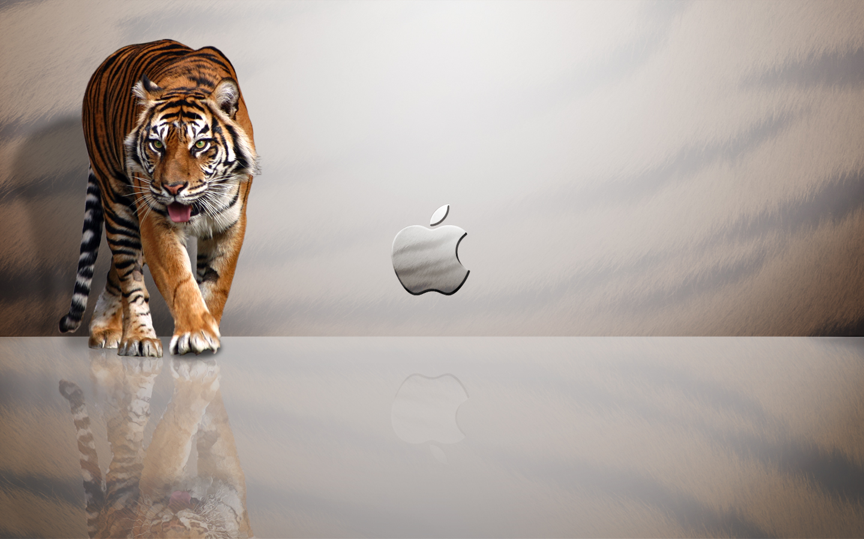 tiger apple mac wallpaper hd broken desktop apple mac wallpaper 1440x900