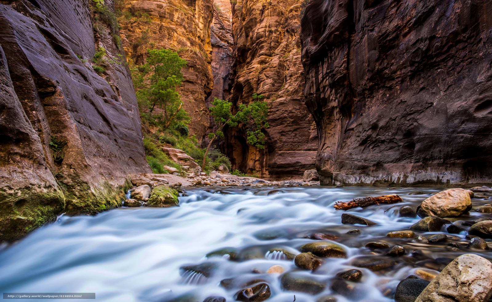 wallpaper Zion National Park river Rocks landscape desktop 1600x985
