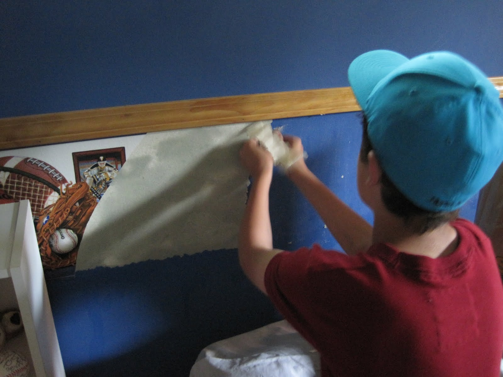 49+ Piranha Wallpaper and Paste Remover on WallpaperSafari