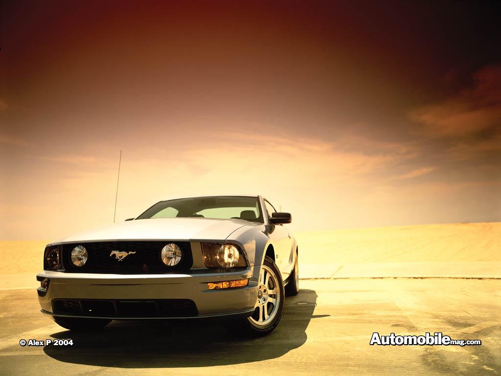 2004 Ford Mustang Svt Cobra Convertible 7392 Wallpaper Automotive 1024x768