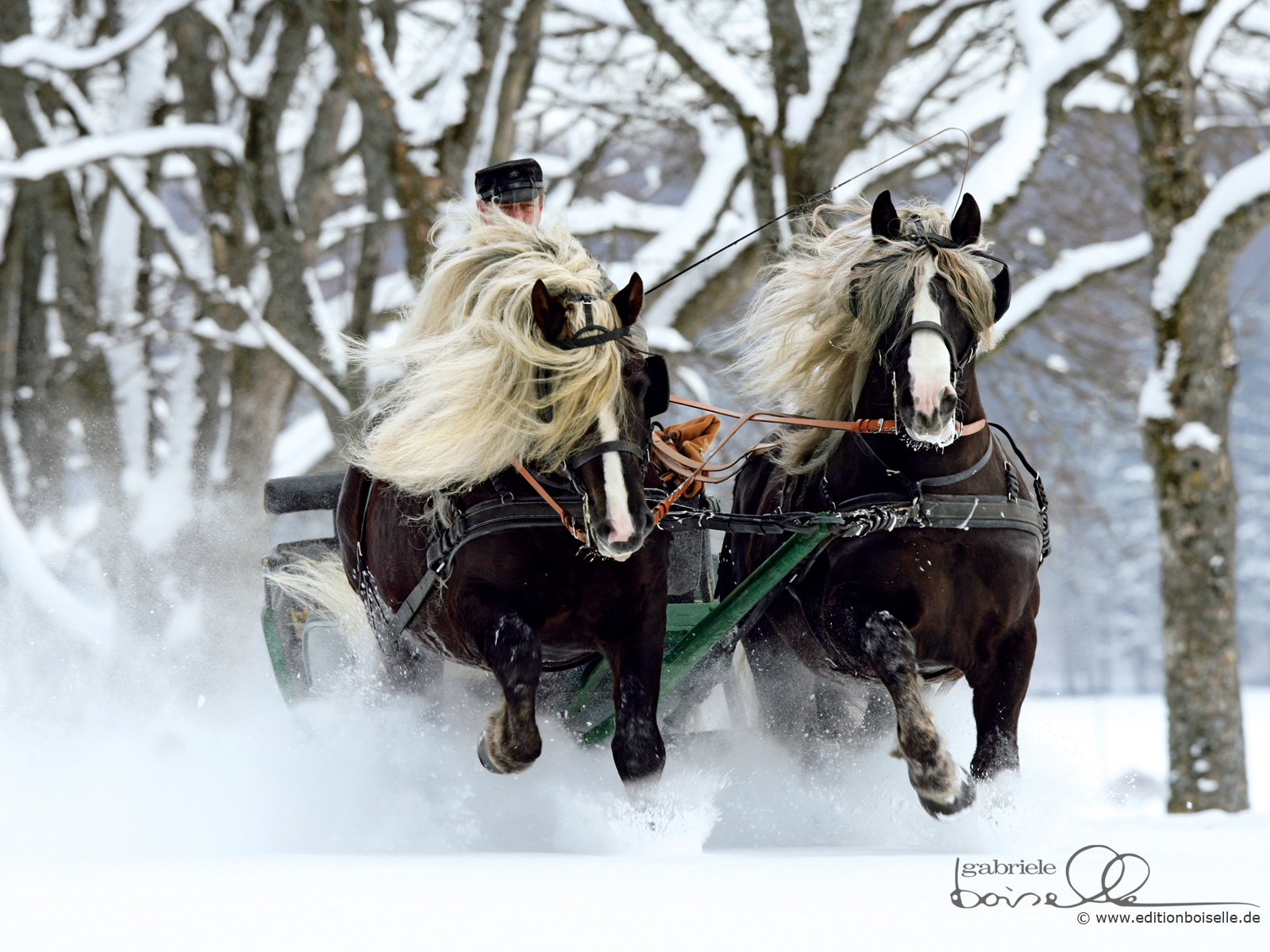 Christmas horse wallpaper free wallpapersafari - Free horse backgrounds ...