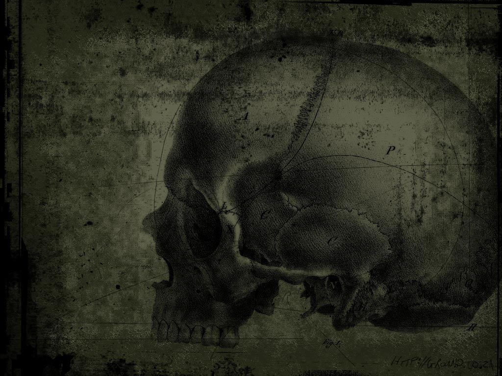 Download Scary Skulls Wallpaper Dark Side Skull 1024x768
