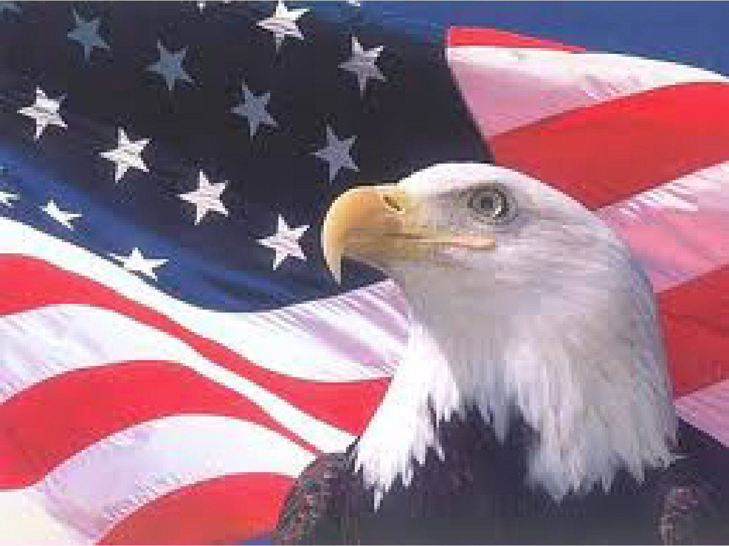 American Flag Eagle Images Pictures   Becuo 1500x1125