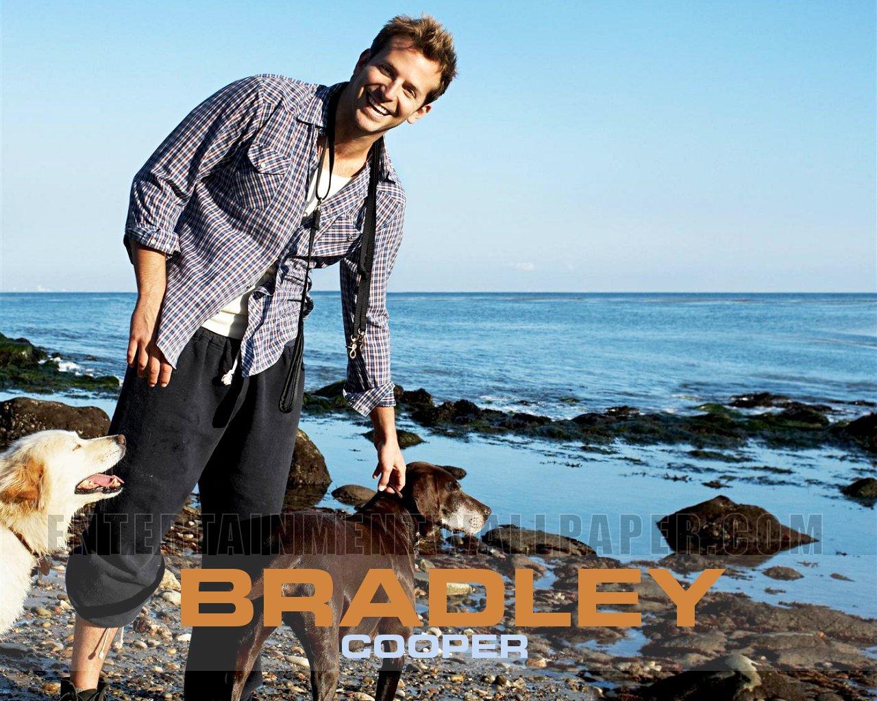 bradley cooper   Bradley Cooper Wallpaper 23904577 1280x1024