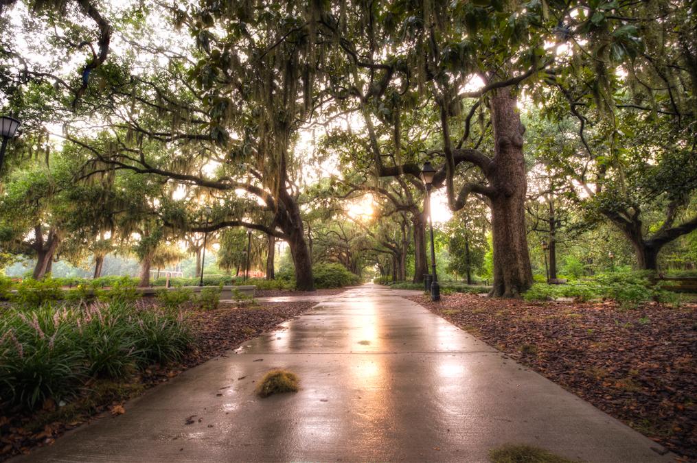 Park Savannah Ga Taken With Instagram HD Walls Find Wallpapers 1015x675