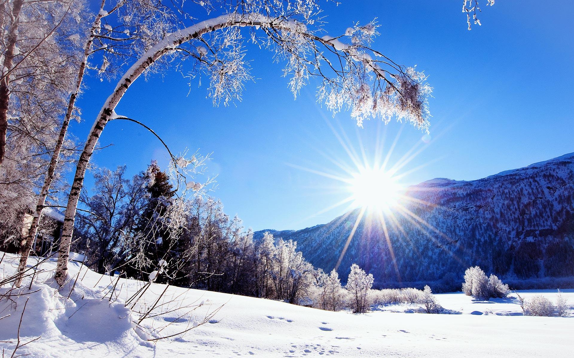 Winter: Sunny Winter Day Les Zima Autumn Snow Nature Desktop ...