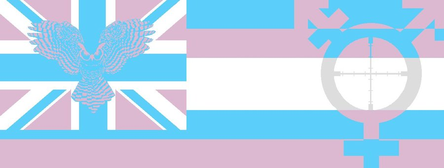 Transgender Flag Related Keywords Suggestions   Transgender Flag 900x342