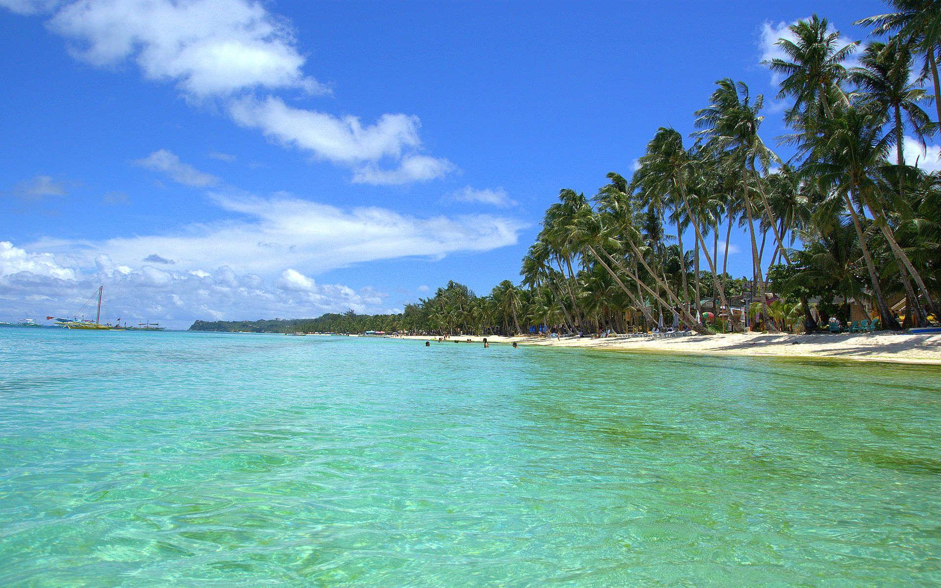 tropical beach wallpaper 06443  Download 1920x1200