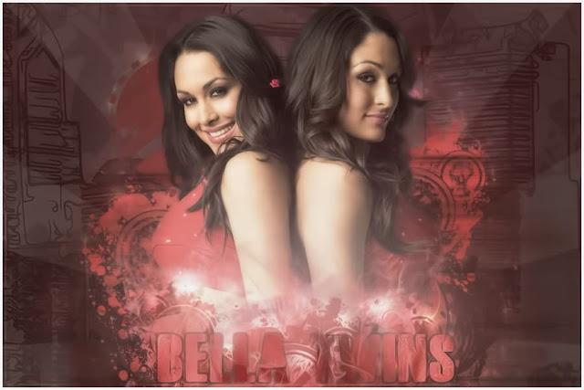 THE DIVAS The Bella Twins Brie Bella Nikki Bella 19 IUNIE 2013 640x427