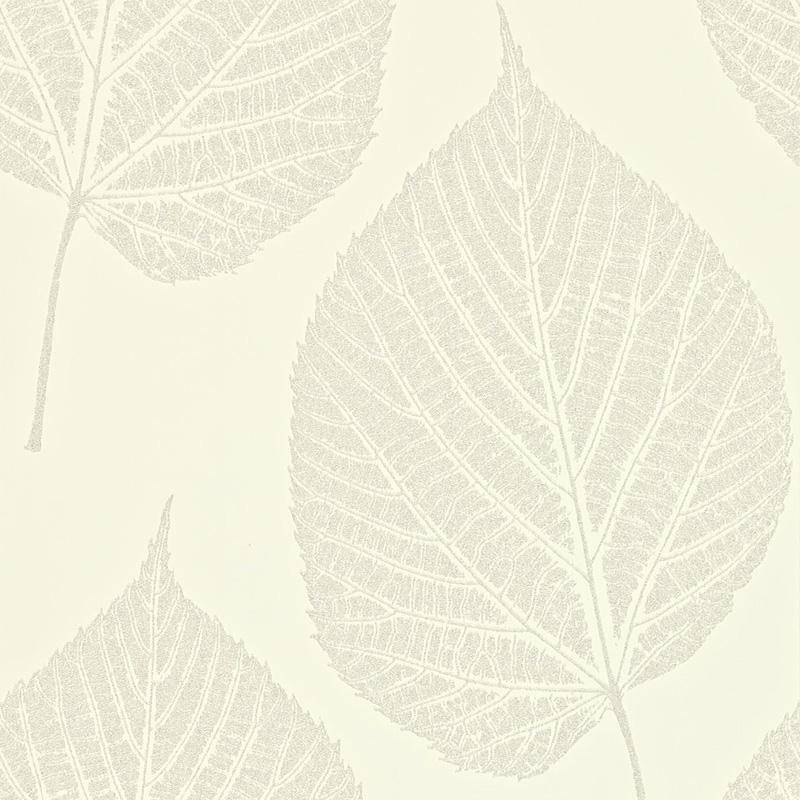 Harlequin Leaf 110375 Pearl wallpaper from the Momentum II 800x800