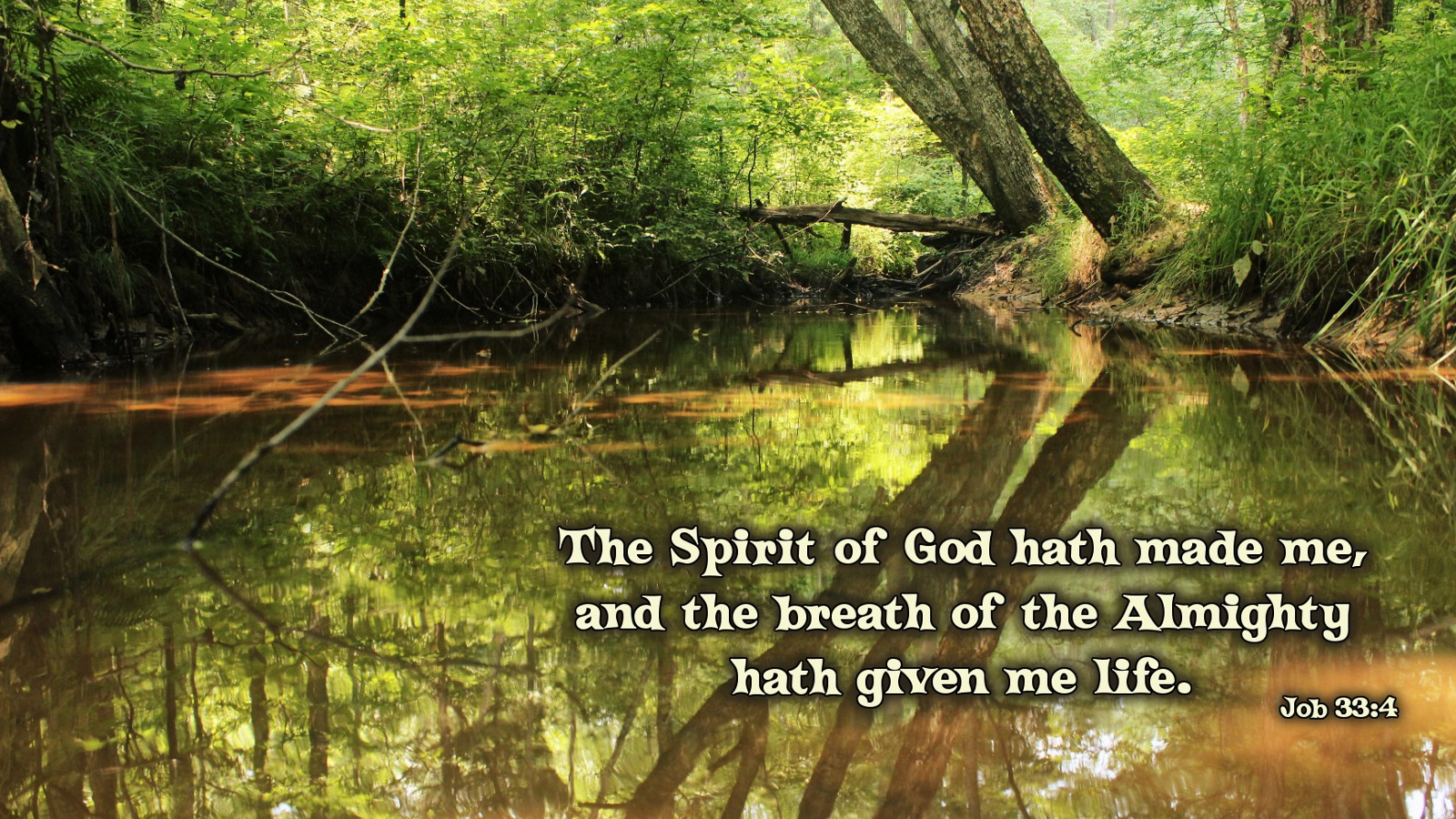 The Spirit of God hath made me and the breath of the Almighty hath 1600x900