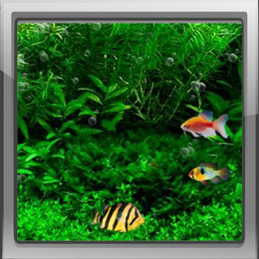 3d Aquarium Live Wallpaper: Fish Aquarium Live Wallpaper