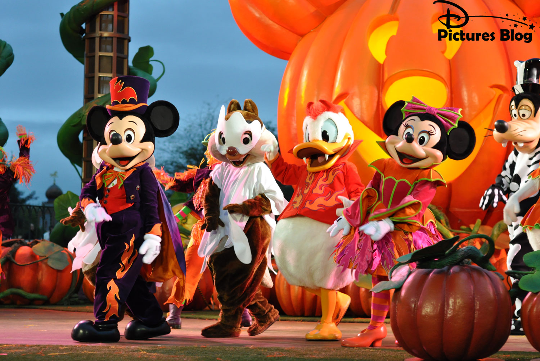 Disneyland Paris Terrorific 1500x1004
