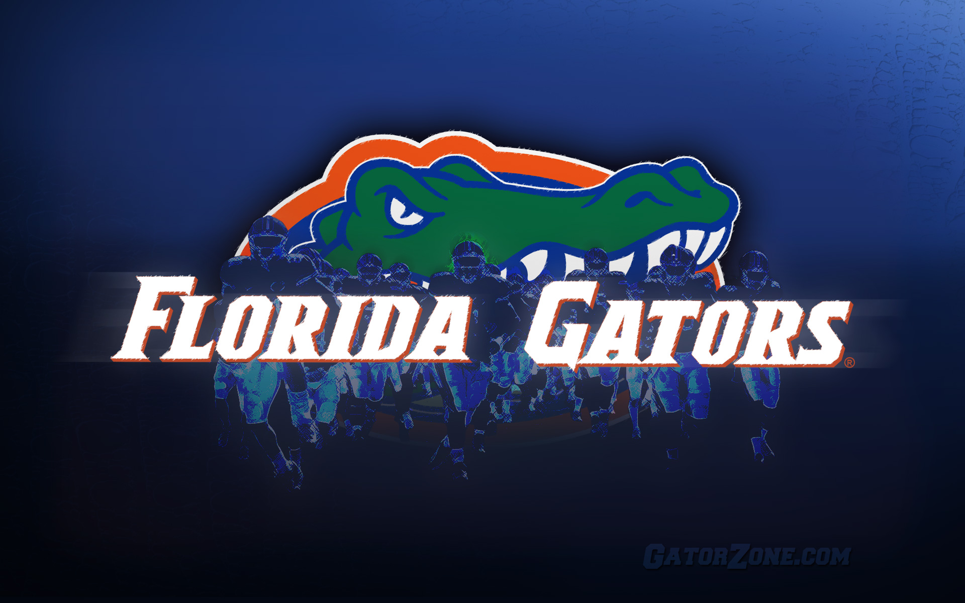 Florida Gators Football Wallpaper   Football Wallpaper HD Football 1920x1200