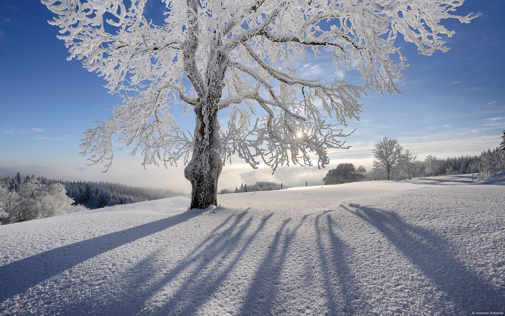 Winter and Christmas desktop backgrounds HD Wallpapers 1920x1200