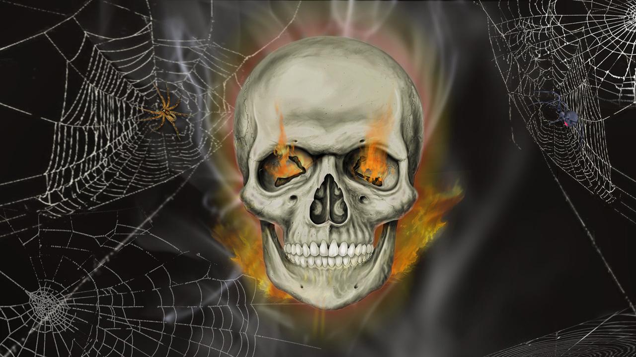 home skull animated skull wallpaper 10 1280x720