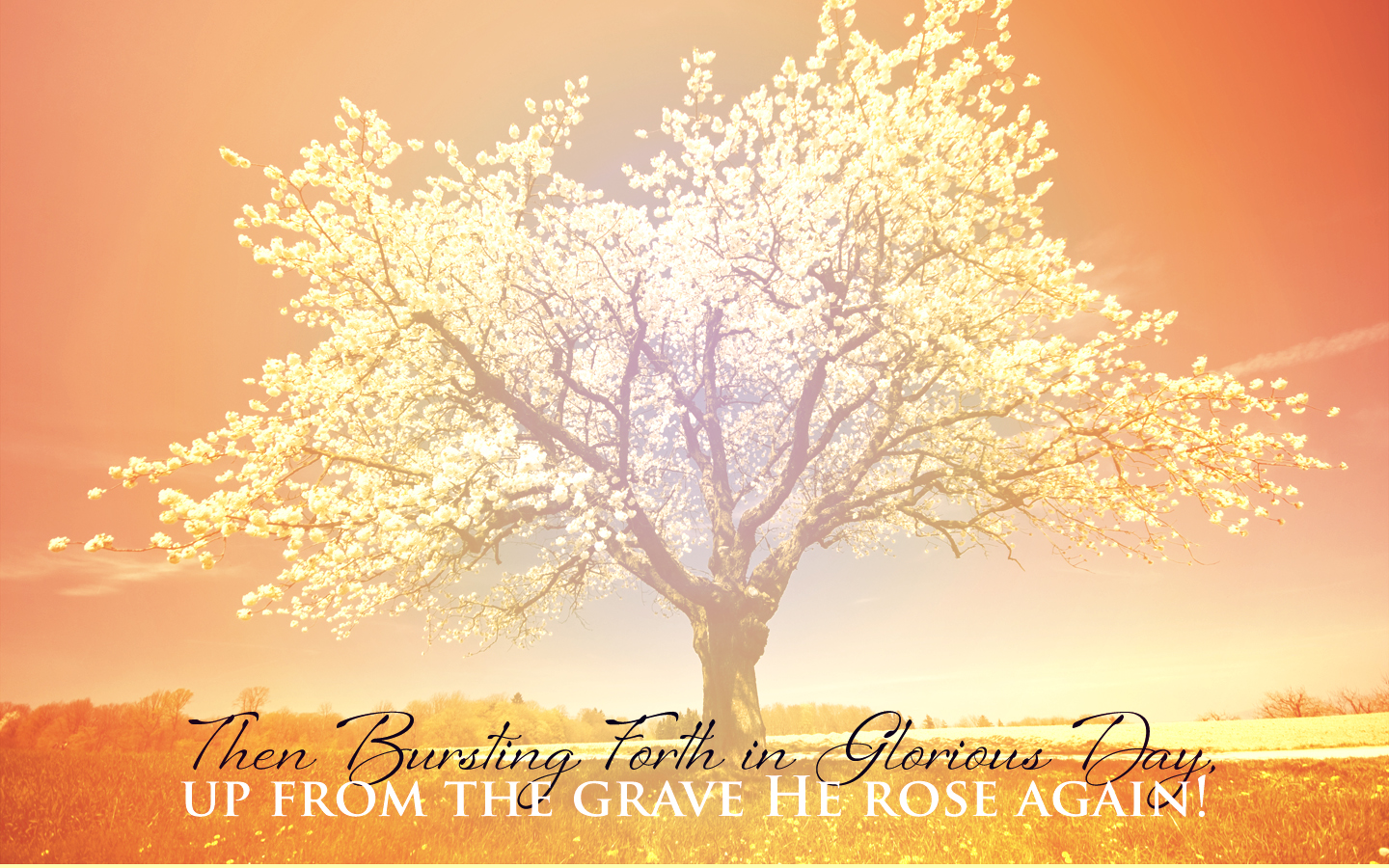Free beautiful christian spring wallpaper wallpapersafari - Christian easter images free ...