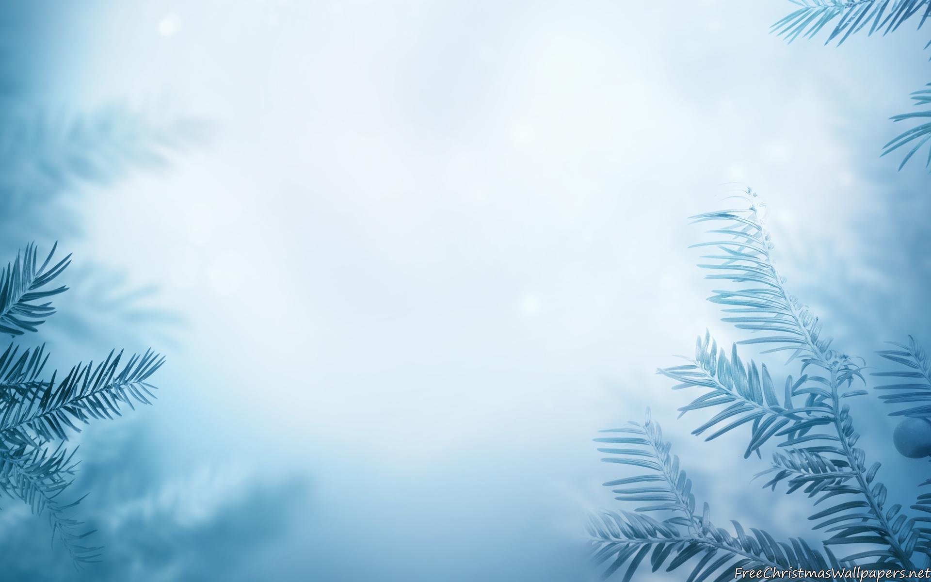 Winter Background wallpaper 1920x1200 81016 1920x1200