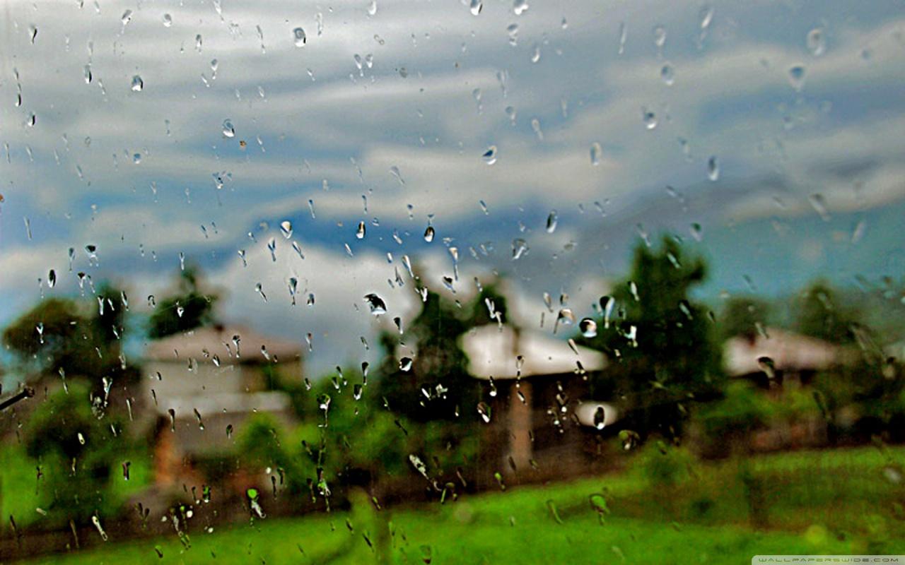 Rainy Day 1280x800