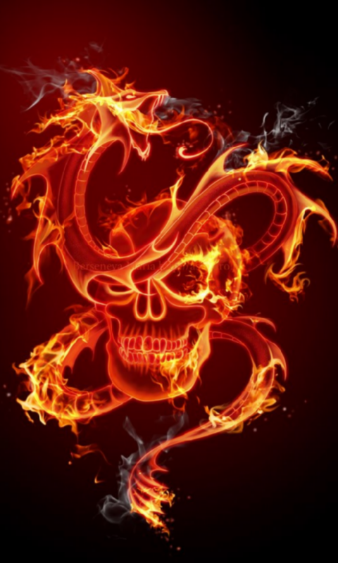 Fire Skull 3D Live Wallpaper   screenshot 480x800