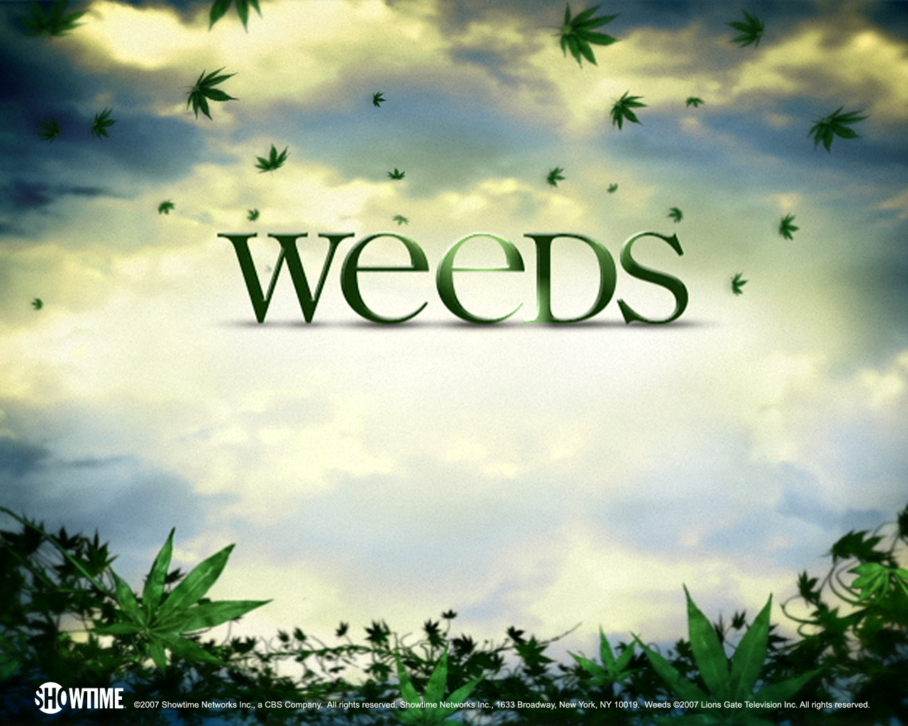 weeds wallpaper 1280x1024 weed weed hd p courses download weeddownload 1280x1024