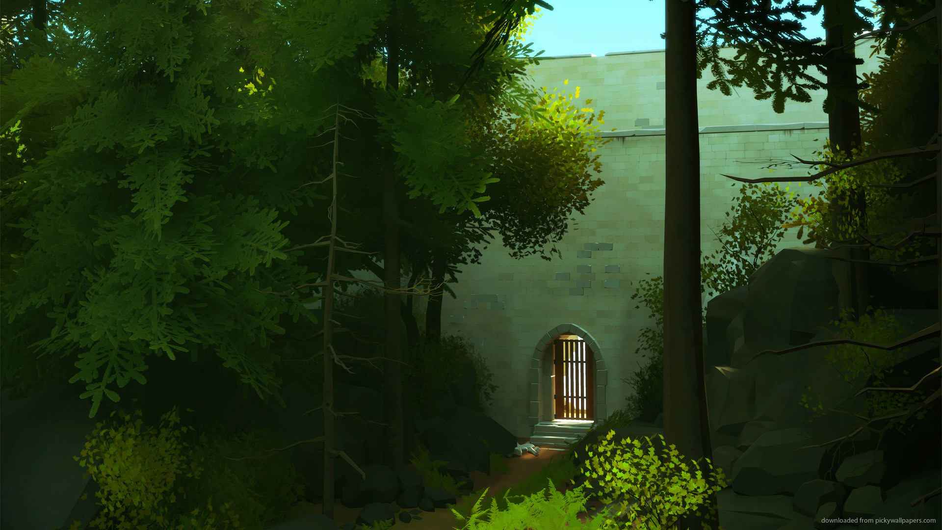 The Witness Wallpapers 30 Wallpapers Adorable Wallpapers 1920x1080