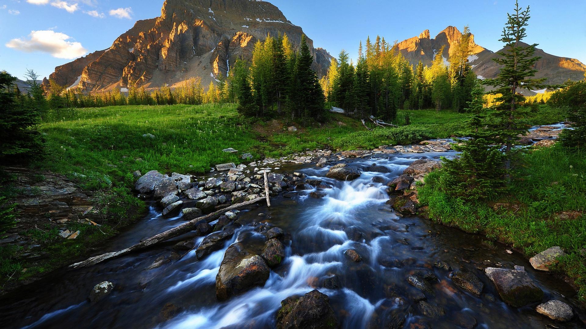 Sweet Waters A River A Plague and a Savior Ocieanna Fleiss 1920x1080