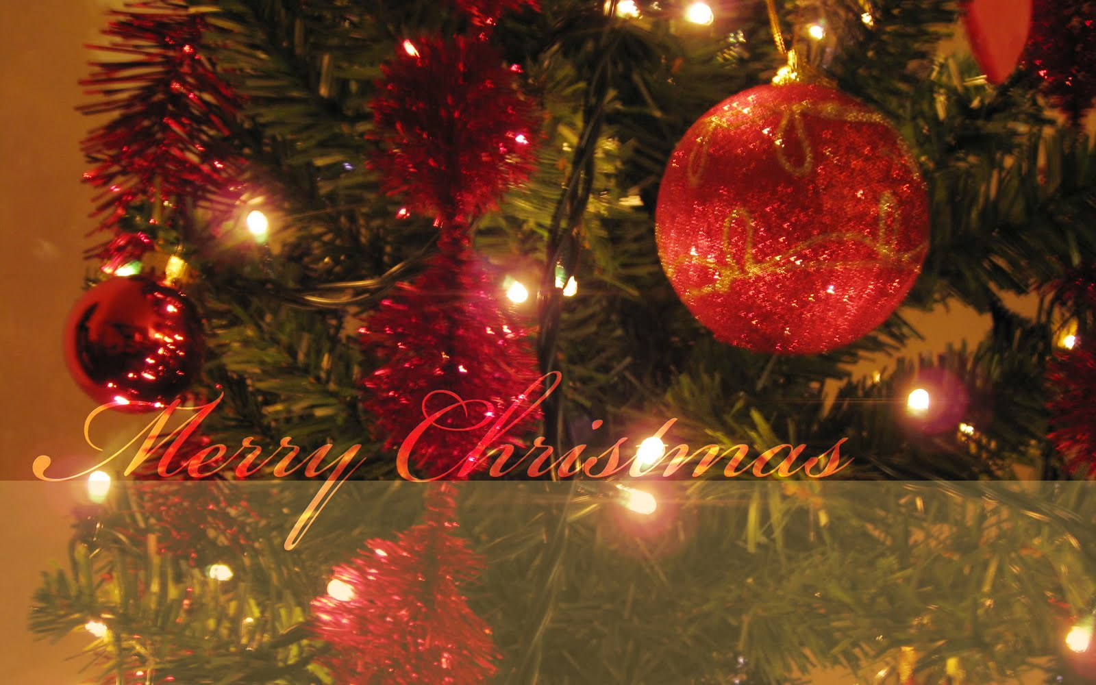 High Definition Photo And Wallpapers christmas wallpapers 1600x1000