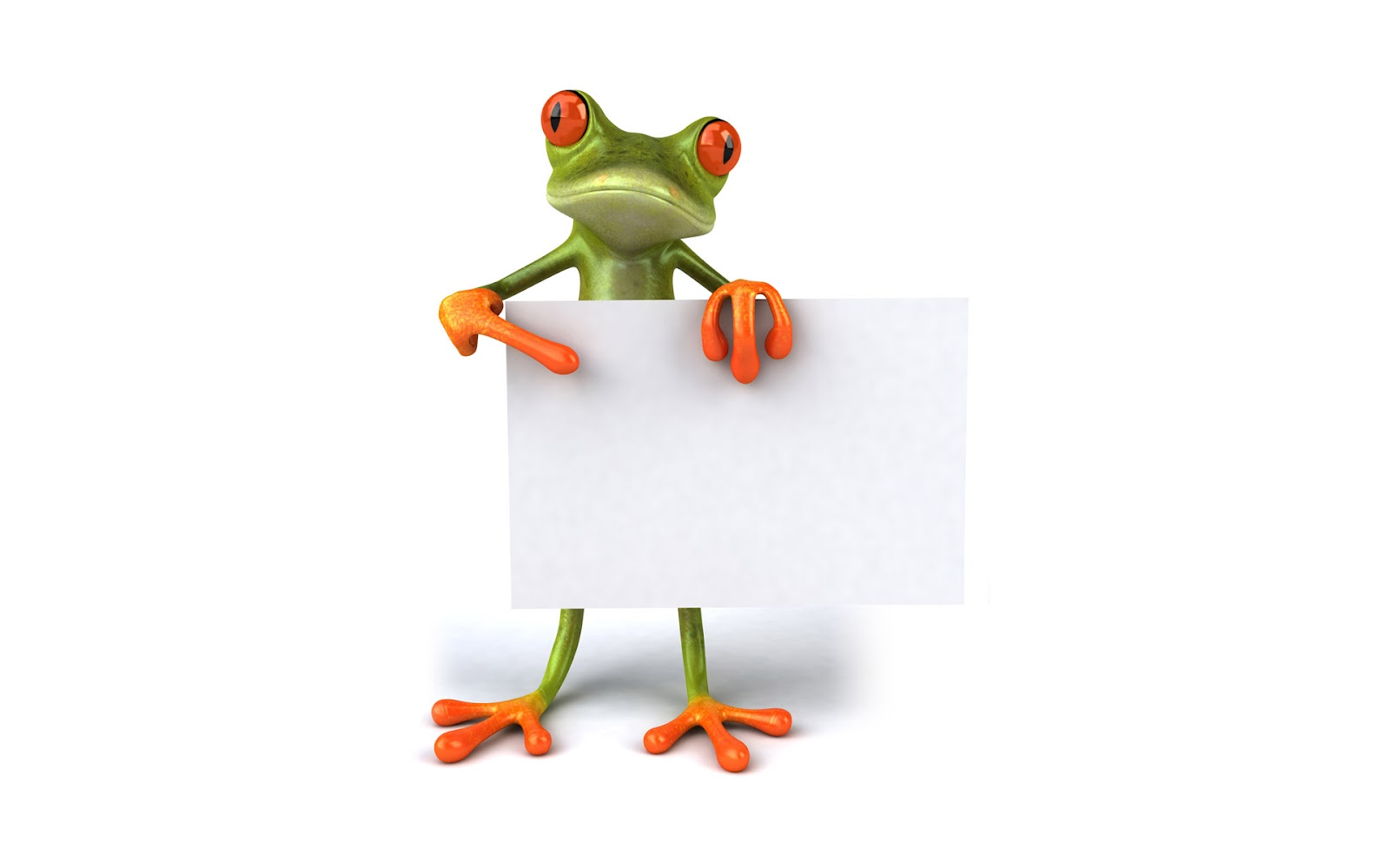 Cute frog points to a paper wallpaper The Wallpaper Database 1600x1000