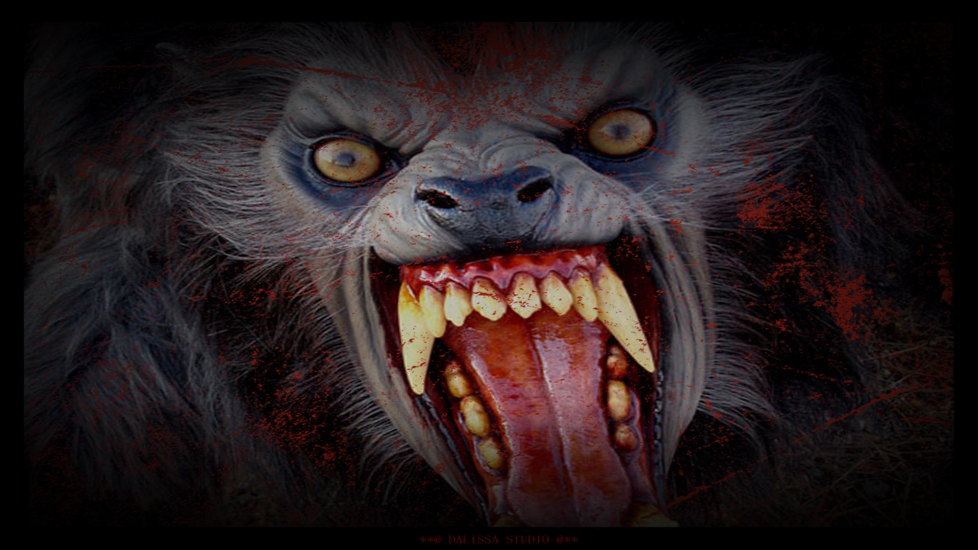 Werewolf Computer Wallpapers Desktop Backgrounds 1920x1080 ID 1920x1080