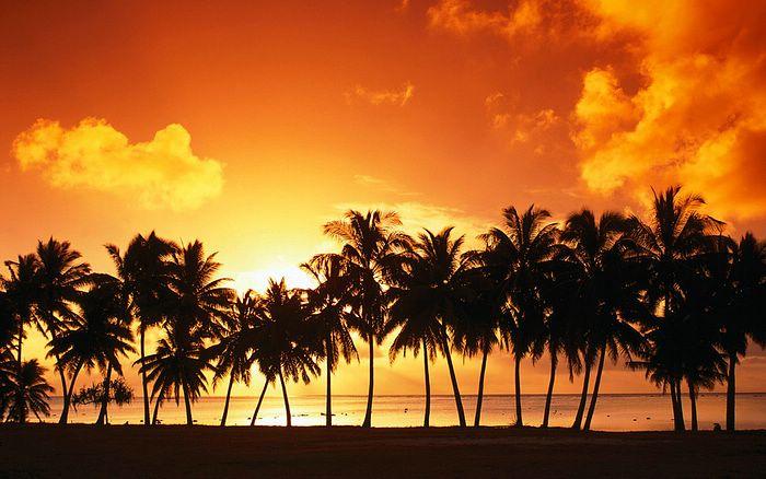 Sunset Beach   Widescreen Beach Wallpaper19   Wallcoonet 700x438
